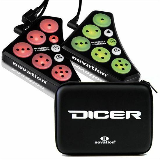 Immagine di DICER controller